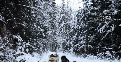 5 memorable winter adventures in Jasper National Park